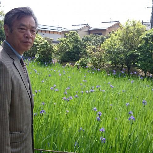 大田神社カキツバタ