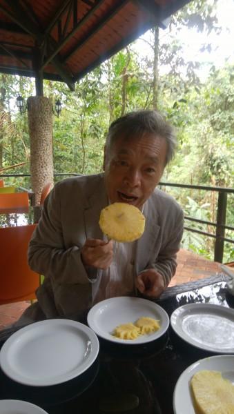 IMG_20190809_113341 パイナップルを食する
